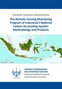 Executive Summary The Remote Sensing
