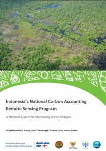Indonesia National Carbon