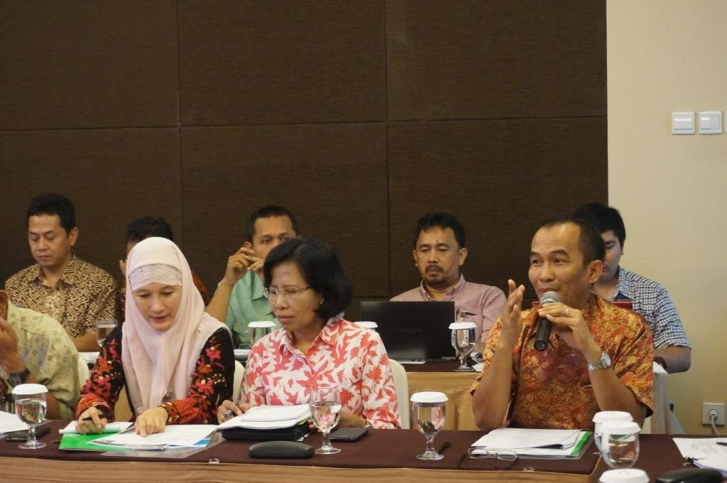 INCAS Technical review workshop_17 Sept 2014 (4)